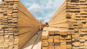lumber_-_shutterstock